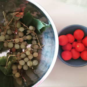 uva e pomodorini raccolto di fine estate
